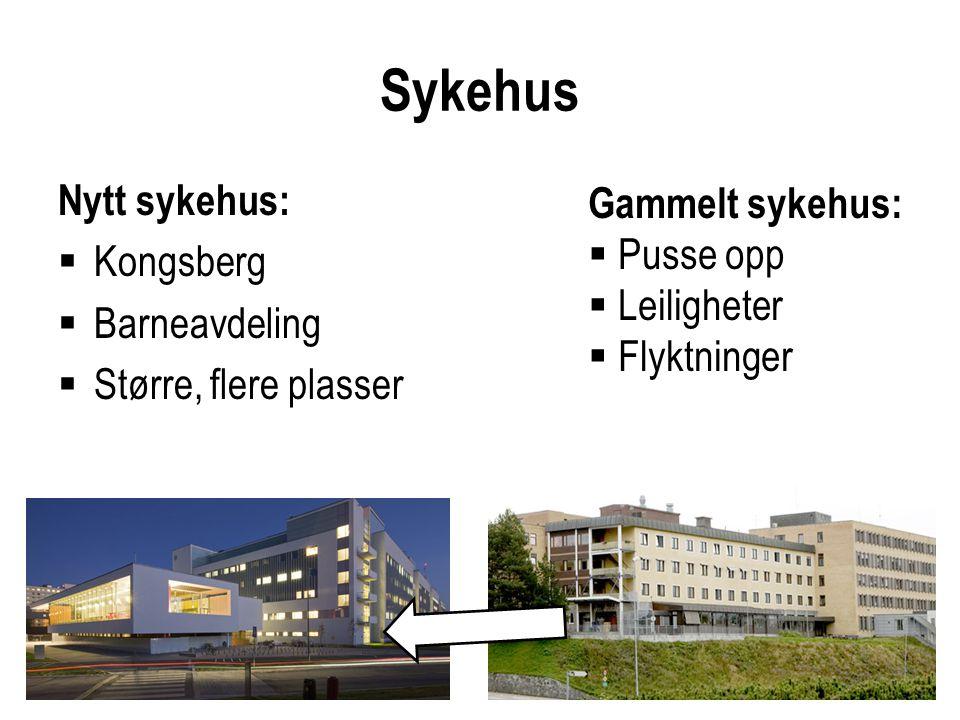 Sykehus Nytt sykehus:  Kongsberg  Barneavdeling  Større, flere plasser Gammelt sykehus:  Pusse opp  Leiligheter  Flyktninger