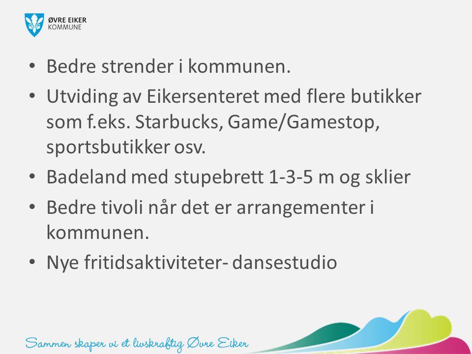 Bedre strender i kommunen. Utviding av Eikersenteret med flere butikker som f.eks. Starbucks, Game/Gamestop, sportsbutikker osv. Badeland med stupebre