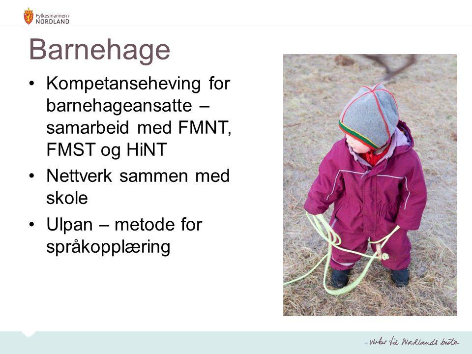 Barnehage Kompetanseheving for barnehageansatte – samarbeid med FMNT, FMST og HiNT Nettverk sammen med skole Ulpan – metode for språkopplæring