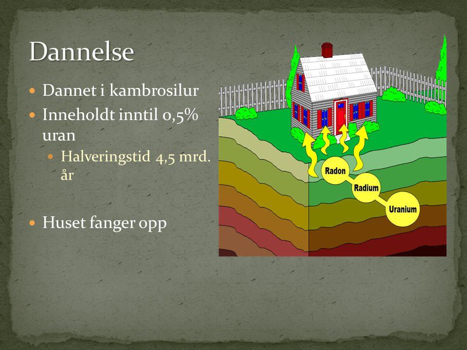 Dannet i kambrosilur Inneholdt inntil 0,5% uran Halveringstid 4,5 mrd. år Huset fanger opp