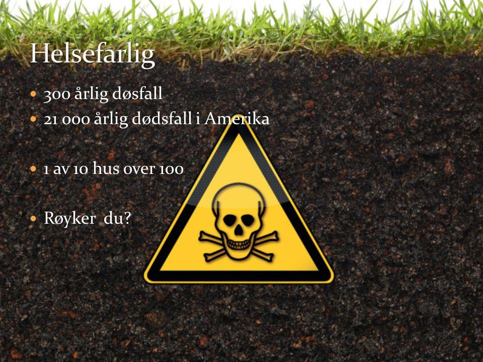 300 årlig døsfall 21 000 årlig dødsfall i Amerika 1 av 10 hus over 100 Røyker du?
