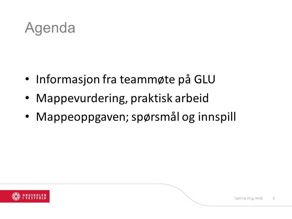 Agenda Informasjon fra teammøte på GLU Mappevurdering, praktisk arbeid Mappeoppgaven; spørsmål og innspill Camilla Wiig, HIVE2