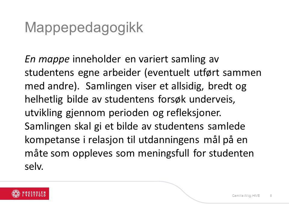 Mappepedagogikk En mappe inneholder en variert samling av studentens egne arbeider (eventuelt utført sammen med andre).