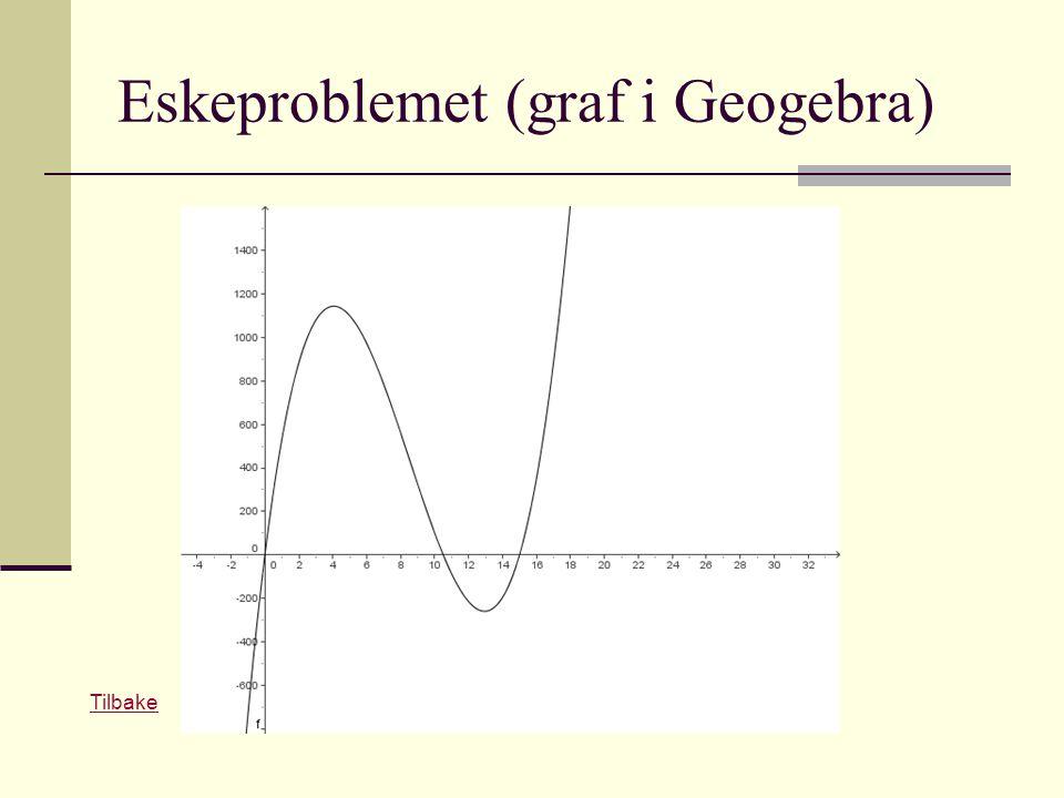 Eskeproblemet (graf i Geogebra) Tilbake