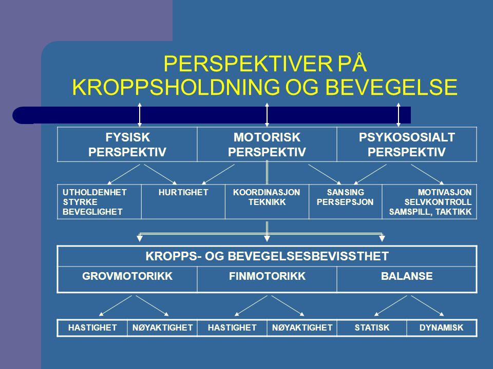 FYSISK PERSPEKTIV MOTORISK PERSPEKTIV PSYKOSOSIALT PERSPEKTIV UTHOLDENHET STYRKE BEVEGLIGHET HURTIGHETKOORDINASJON TEKNIKK SANSING PERSEPSJON MOTIVASJON SELVKONTROLL SAMSPILL, TAKTIKK KROPPS- OG BEVEGELSESBEVISSTHET GROVMOTORIKKFINMOTORIKKBALANSE HASTIGHETNØYAKTIGHETHASTIGHETNØYAKTIGHETSTATISKDYNAMISK PERSPEKTIVER PÅ KROPPSHOLDNING OG BEVEGELSE