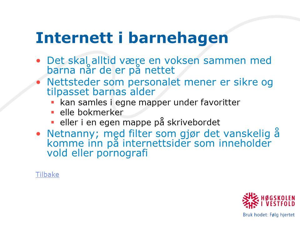 Lenker til hjelp i mappearbeidet Webcam i barnehage: http://www.datatilsynet.no/templates/article____1291.aspx http://www.datatilsynet.no/templates/article____1291.aspx Bergen kommunes rutiner: http://www.bergen.kommune.no/bk/multimedia/archive/00011/Retn ingslinjer_for_p_11941a.doc http://www.bergen.kommune.no/bk/multimedia/archive/00011/Retn ingslinjer_for_p_11941a.doc Kragerø kommunes rutiner: http://www.kragero.kommune.no/telemark/kragero/hellekirk en.nsf/id/EBB082EEE66E7F2FC1257332004603A8?OpenDocu ment http://www.kragero.kommune.no/telemark/kragero/hellekirk en.nsf/id/EBB082EEE66E7F2FC1257332004603A8?OpenDocu ment