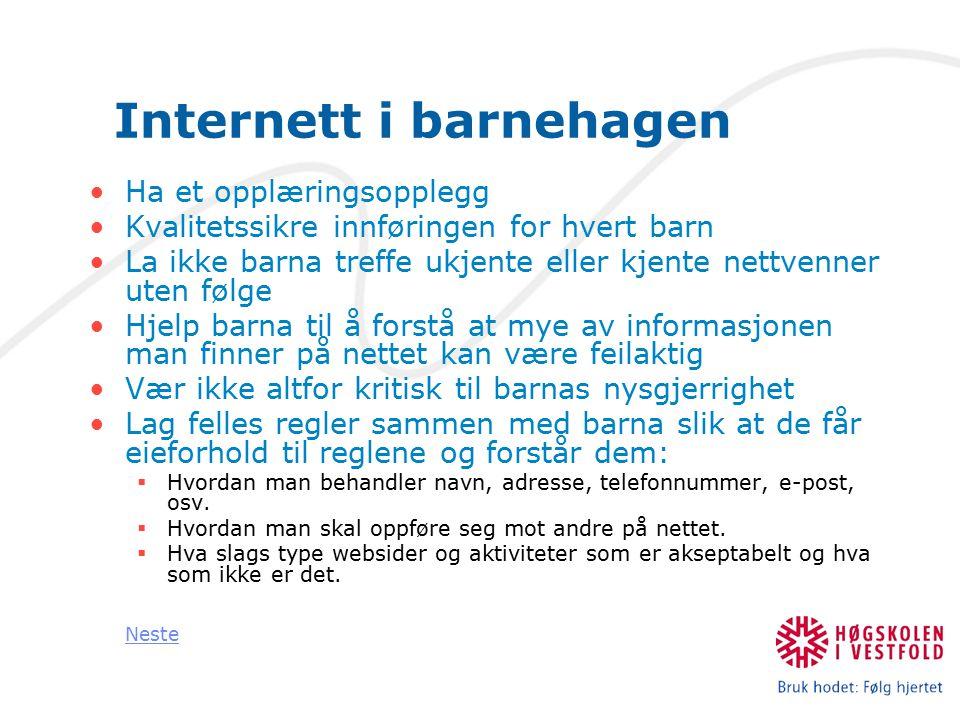 Viktige lenker Clara - datatilsynet Du bestemmer Oppgir navn på nett Personopplysningsloven Straffeloven Åndsverkloven