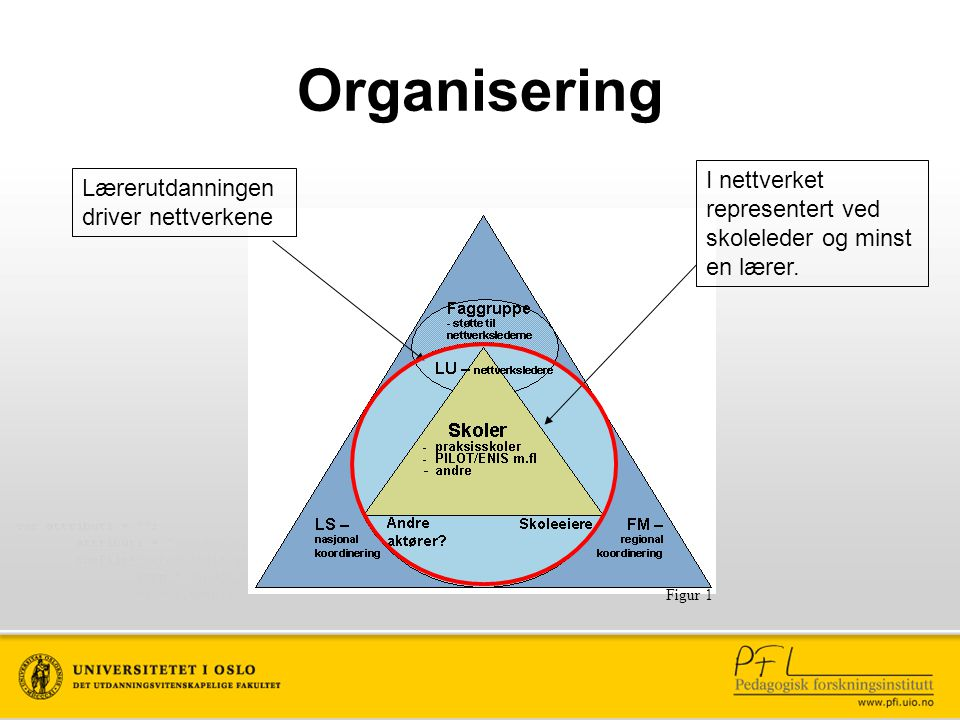 Figur 1 Organisering I nettverket representert ved skoleleder og minst en lærer. Lærerutdanningen driver nettverkene