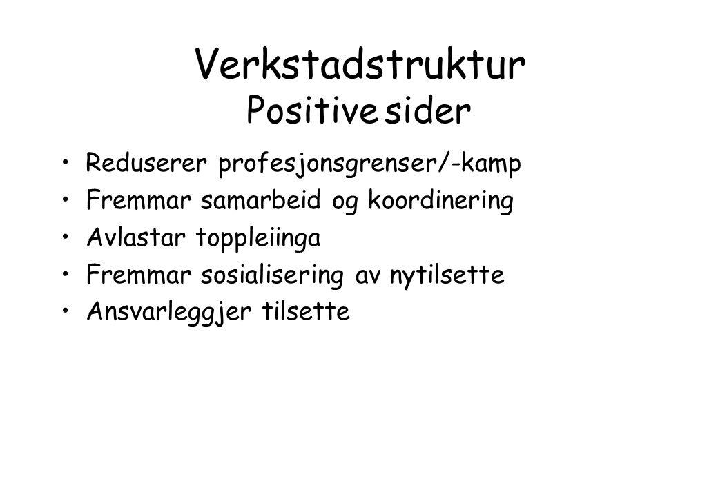 Verkstadstruktur Positive sider Reduserer profesjonsgrenser/-kamp Fremmar samarbeid og koordinering Avlastar toppleiinga Fremmar sosialisering av nyti