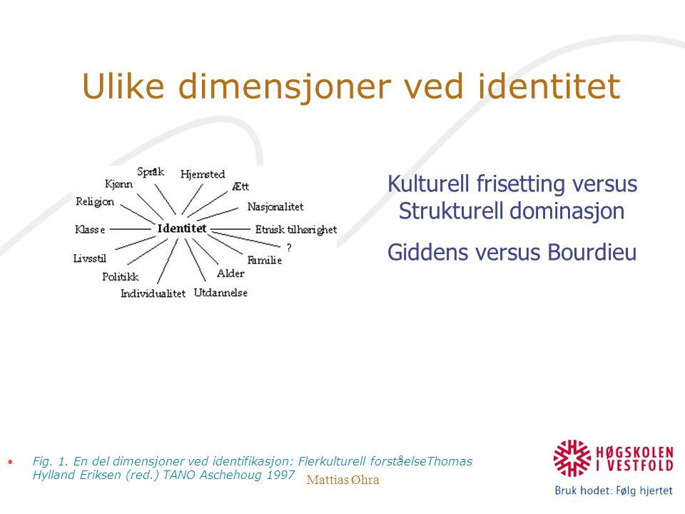 Mattias Øhra Ulike dimensjoner ved identitet Fig. 1. En del dimensjoner ved identifikasjon: Flerkulturell forståelseThomas Hylland Eriksen (red.) TANO