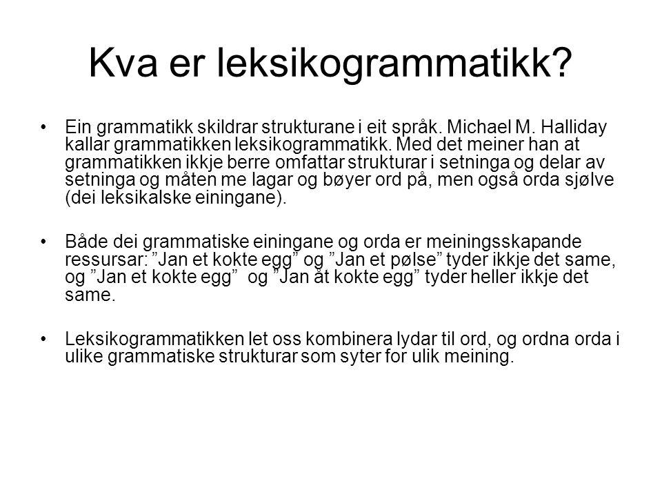Kva er leksikogrammatikk? Ein grammatikk skildrar strukturane i eit språk. Michael M. Halliday kallar grammatikken leksikogrammatikk. Med det meiner h