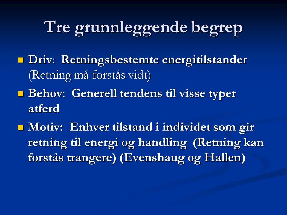 Tre grunnleggende begrep Driv: Retningsbestemte energitilstander (Retning må forstås vidt) Driv: Retningsbestemte energitilstander (Retning må forstås