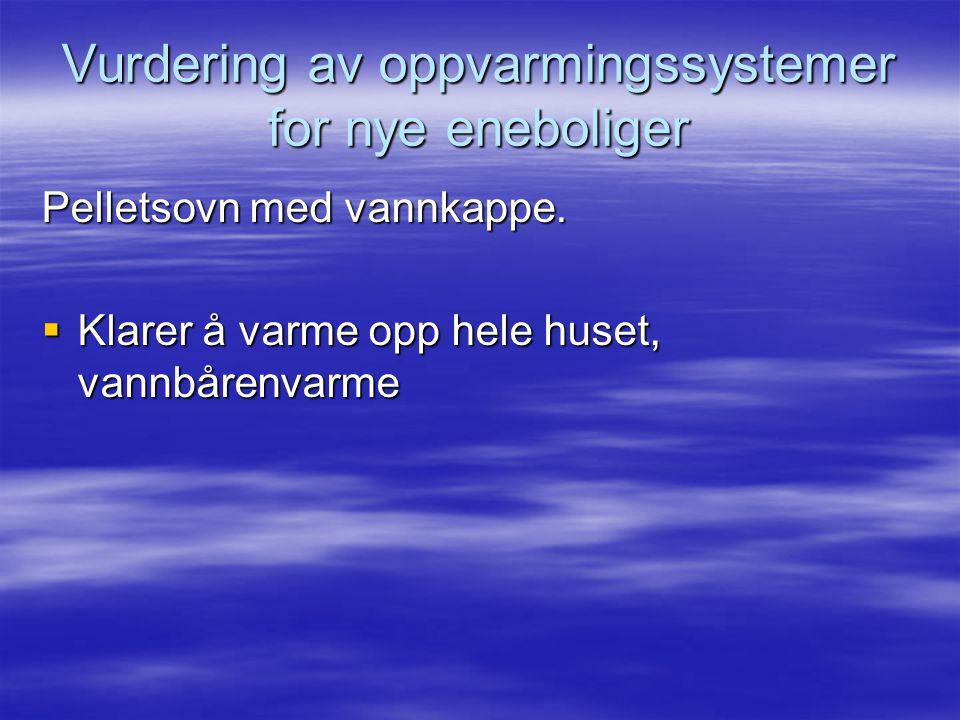 Vurdering av oppvarmingssystemer for nye eneboliger Pelletsovn med vannkappe.