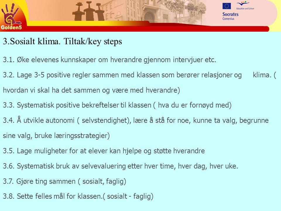 3.Sosialt klima.Tiltak/key steps 3.1. Øke elevenes kunnskaper om hverandre gjennom intervjuer etc.