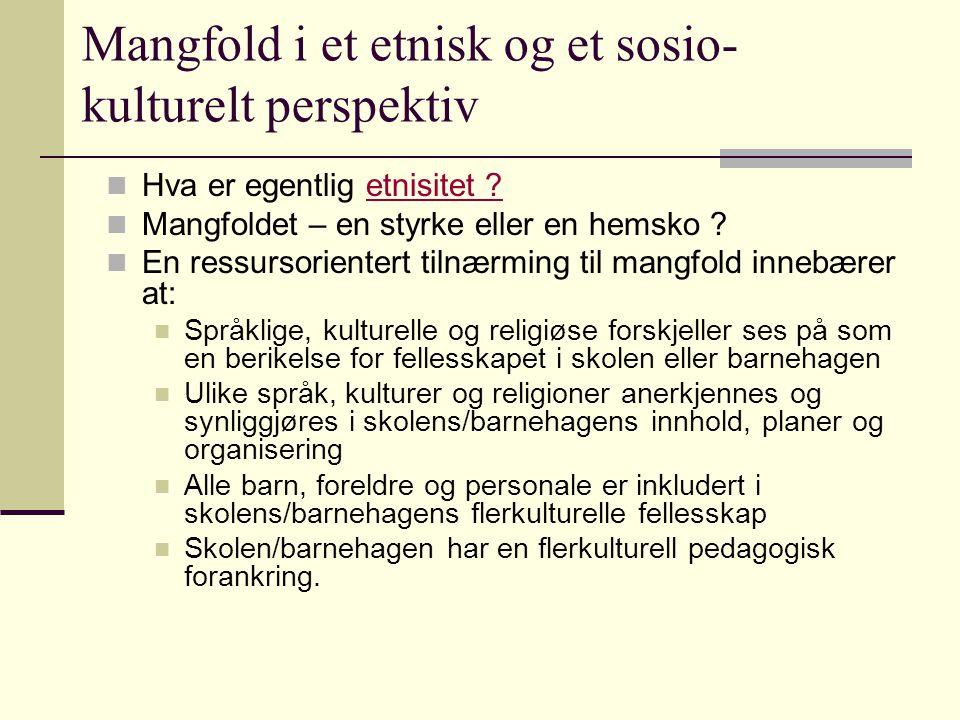 Refleksjonsspørsmål: Mange samler minoritetsspråklige barn og unge i egne enheter for å drive intensiv opplæring i norsk språk og kultur..