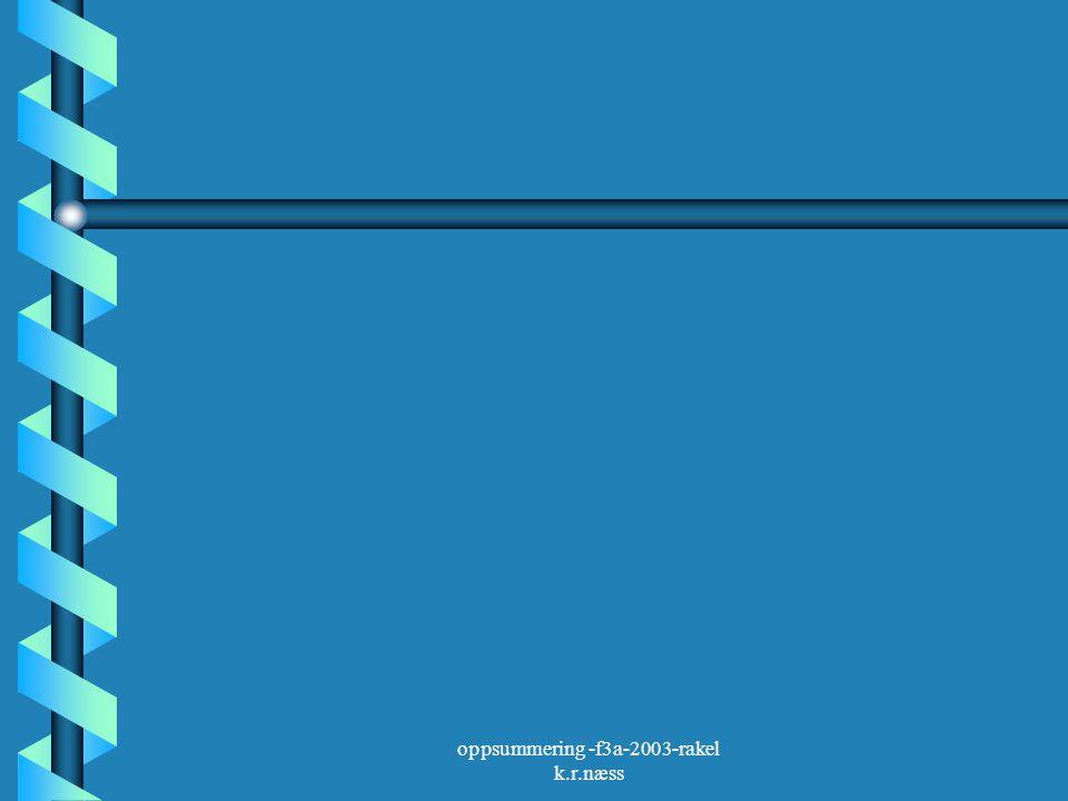 oppsummering -f3a-2003-rakel k.r.næss