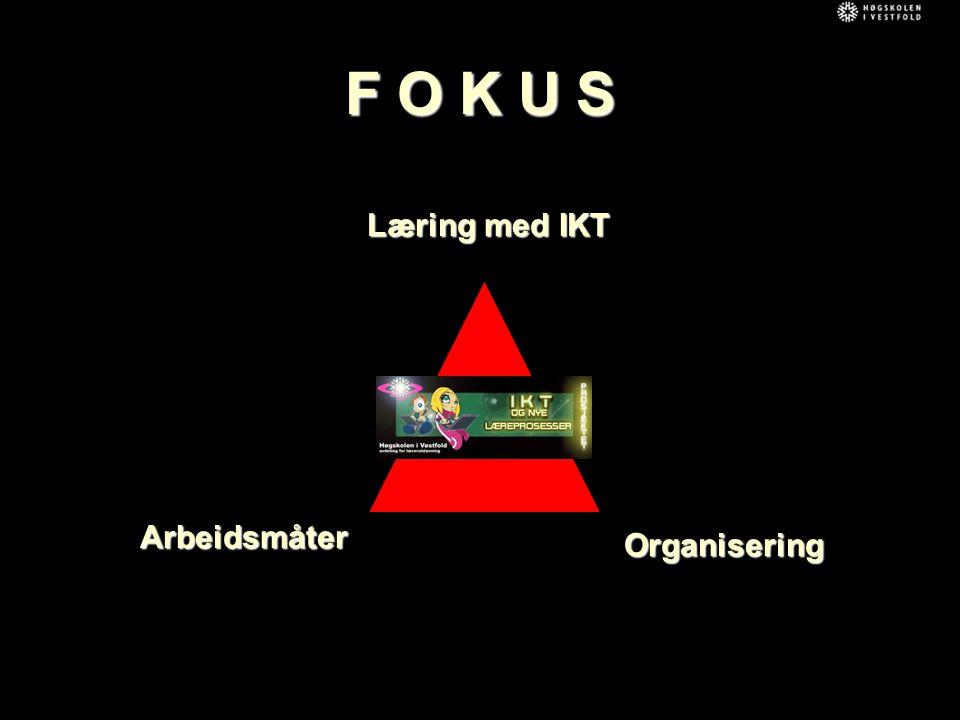 F O K U S Arbeidsmåter Læring med IKT Organisering