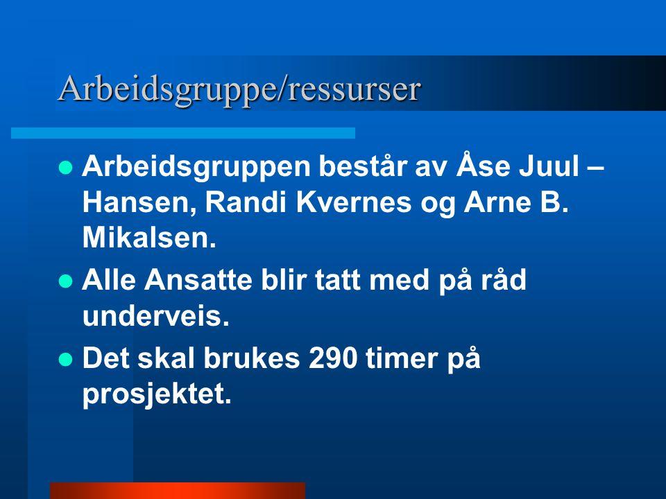 Arbeidsgruppe/ressurser Arbeidsgruppen består av Åse Juul – Hansen, Randi Kvernes og Arne B. Mikalsen. Alle Ansatte blir tatt med på råd underveis. De