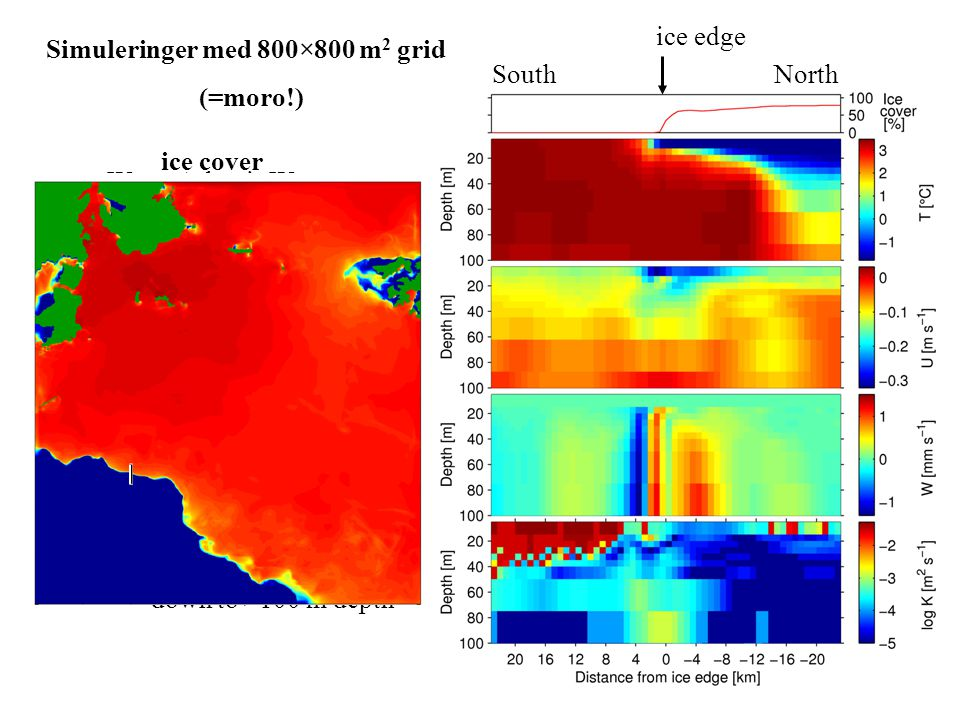 "Simuleringer med 800×800 m 2 grid (=moro!) SouthNorth ice edge Warm Atlantic Water meets ice and cold Arctic Water ""Jet"" current flows westward along"