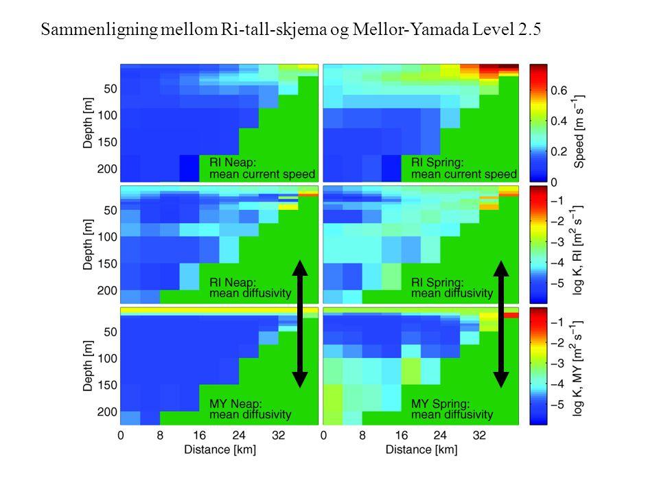 Sammenligning mellom Ri-tall-skjema og Mellor-Yamada Level 2.5