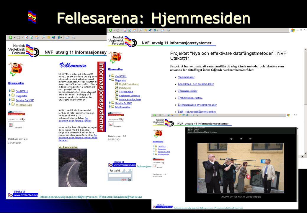 Rev 2003 Nordisk Vejteknisk Forbund NVF-11: Informationsteknologi 12 Fellesarena: Hjemmesiden