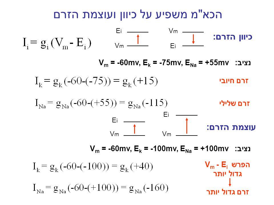 הקבל טעון ולכן :I c = 0 הזרם הכולל בתא = סך הזרמים במערכת במצב עומד (למשל במנוחה), הזרם הכולל = 0 חישוב מתח הממברנה בש מ משוואת גולדמן ( משוואת המוליכויות) * * תמיד מתקיים: g l = g l
