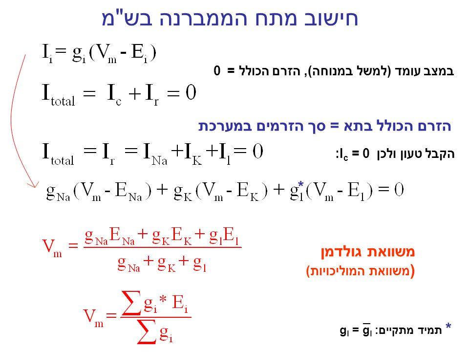 מודל השערים של Hodgkin & Huxley K+K+ Na + הסיכוי ששער אחד יהיה פתוח 0 1 m, hn כל שער יכול להיות פתוח (1) או סגור (0) g k = g k n 4 g Na = g Na m 3 hמוליכות ליון קינטיקה מהיר-mאיטי, -h איטי -n בעקבות דפולריזציה נפתחים -m נסגרים,-hנפתחים -n הסיכוי שתעלה אחת תהיה פתוחה m3hm3hn4n4 בעקבות ירידת מתח הממברנהנסגרים-mנפתחים, -h נסגרים -n