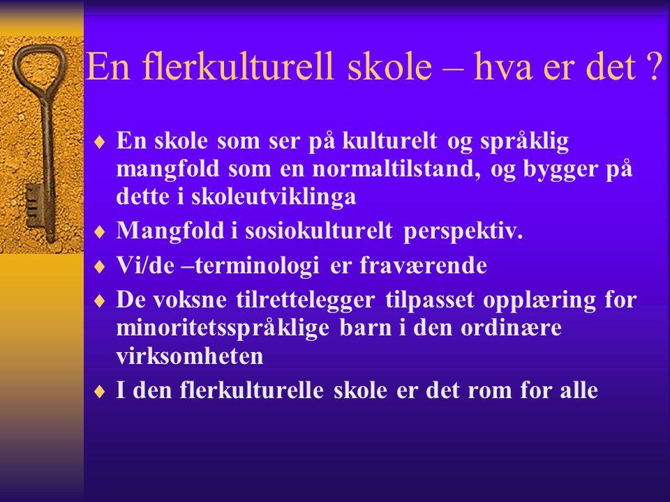 MOTTAK AV NYE BARN / FAMILIER  På skolen  Klassen / de andre  Familien  Kategorier innvandrere:Kulur...