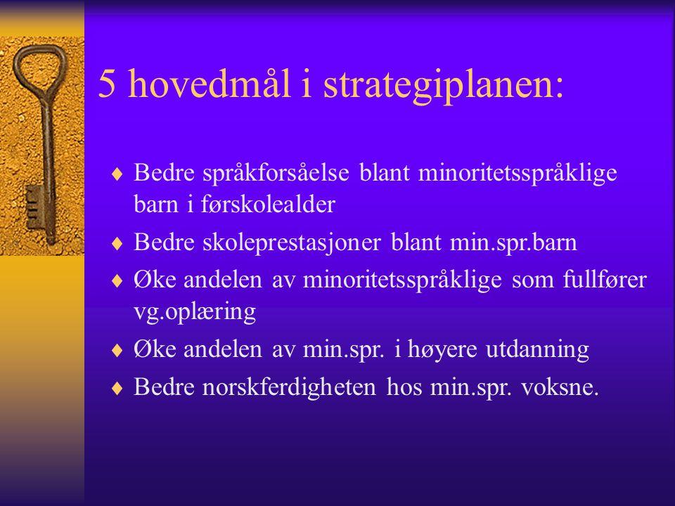SPRÅKOPPLÆRINGA  Fagplaner i kunnskapsløftet – Norsk som 2.språk og morsmålsopplæring  Hvordan lærer vi språk .