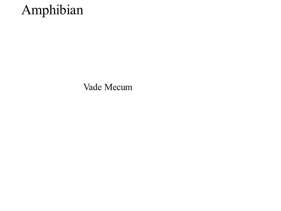 Vade Mecum Amphibian