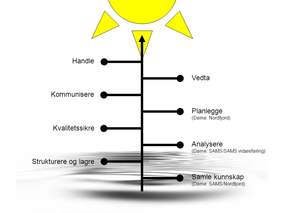 Idégrunnlag Auke brukarmedverknad –for betre offentlege tenester/styring (governance) Betre forvaltning –av informasjon/data Formidling og fortolkning (interpretation) –gjennom geografiske informasjonssystem (GIS) Forvaltningsintegrasjon –for å bygge partnarskap