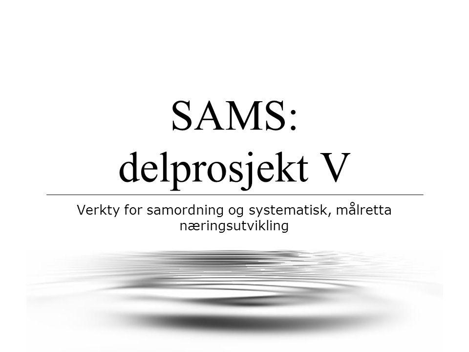 SAMS: delprosjekt V Verkty for samordning og systematisk, målretta næringsutvikling