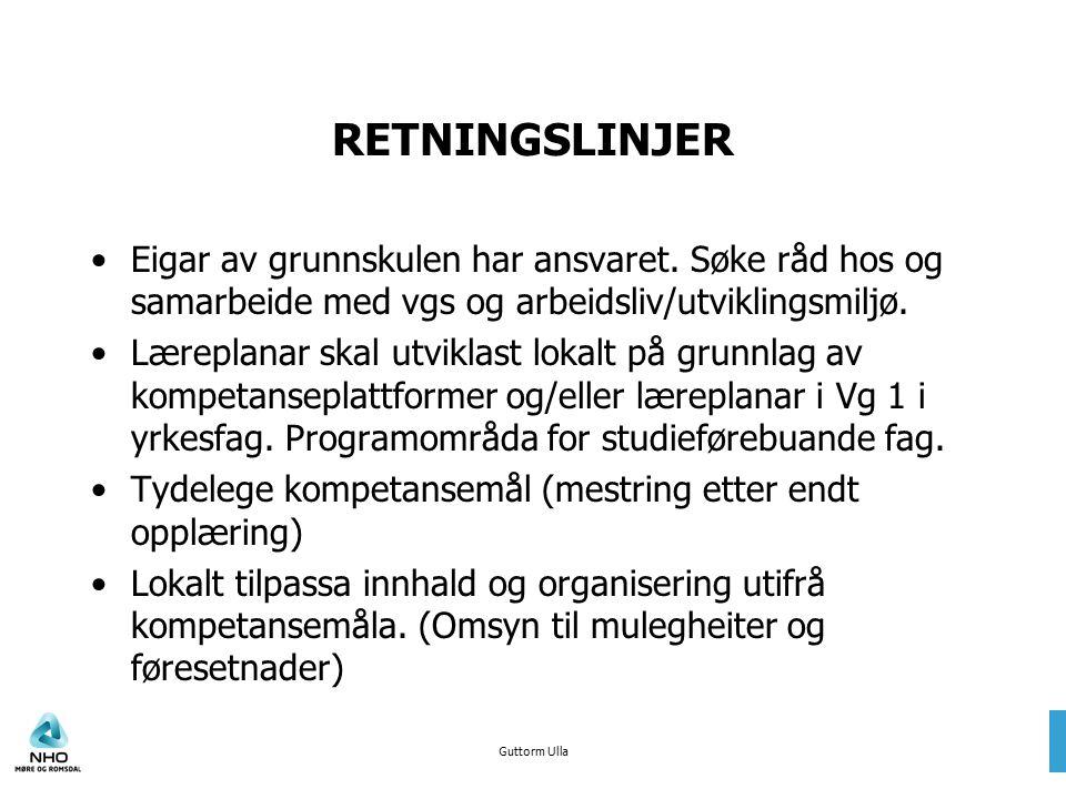 Guttorm Ulla RETNINGSLINJER Eigar av grunnskulen har ansvaret. Søke råd hos og samarbeide med vgs og arbeidsliv/utviklingsmiljø. Læreplanar skal utvik