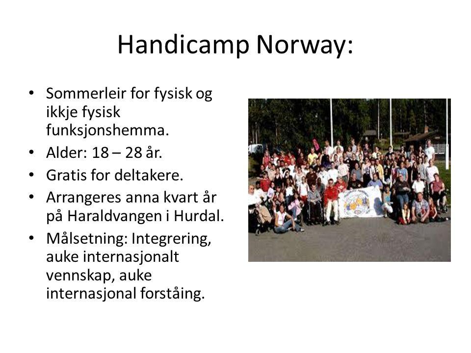 Handicamp Norway: Sommerleir for fysisk og ikkje fysisk funksjonshemma. Alder: 18 – 28 år. Gratis for deltakere. Arrangeres anna kvart år på Haraldvan