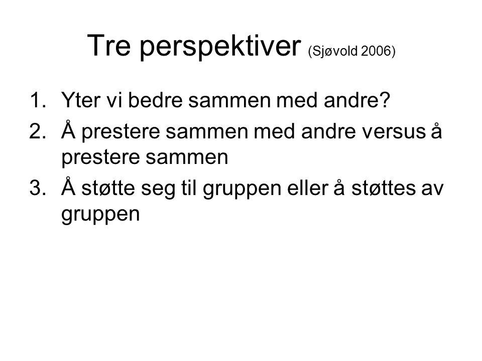 Tre perspektiver (Sjøvold 2006) 1.Yter vi bedre sammen med andre? 2.Å prestere sammen med andre versus å prestere sammen 3.Å støtte seg til gruppen el