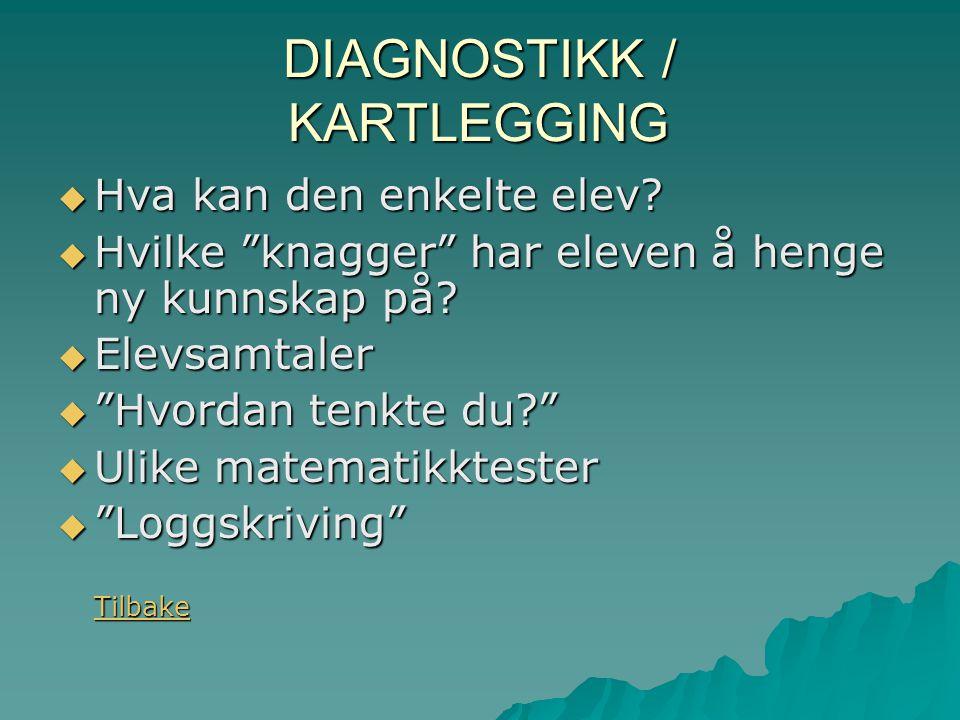 DIAGNOSTIKK / KARTLEGGING  Hva kan den enkelte elev.