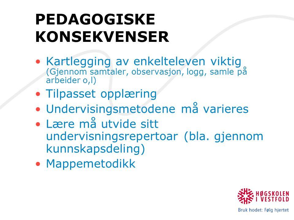 PEDAGOGISKE KONSEKVENSER Kartlegging av enkelteleven viktig (Gjennom samtaler, observasjon, logg, samle på arbeider o,l) Tilpasset opplæring Undervisi