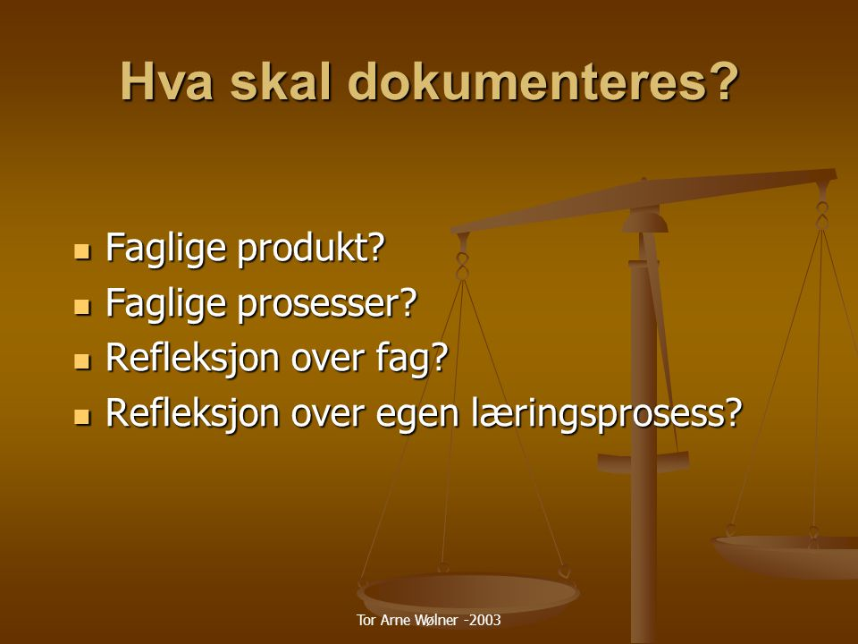 Tor Arne Wølner -2003 Hva skal dokumenteres.Faglige produkt.