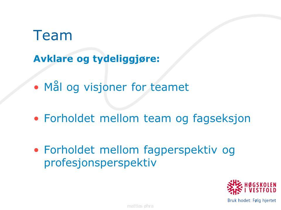 Team Avklare og tydeliggjøre: Mål og visjoner for teamet Forholdet mellom team og fagseksjon Forholdet mellom fagperspektiv og profesjonsperspektiv mattias øhra
