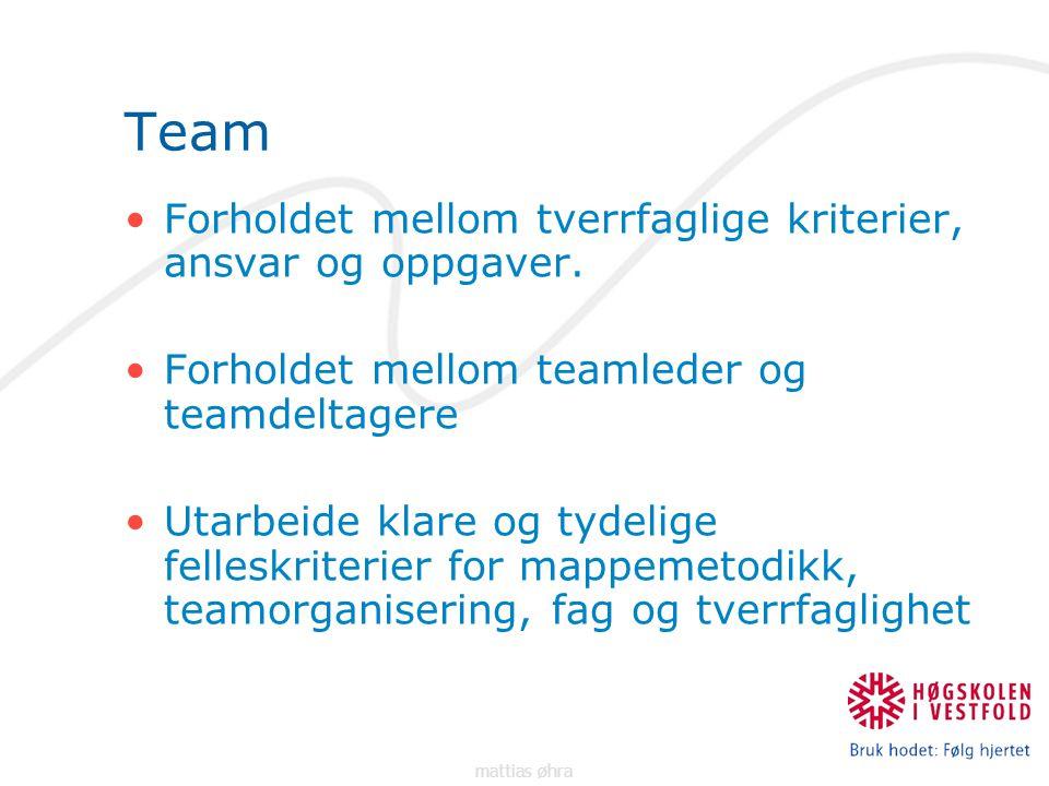 Team Forholdet mellom tverrfaglige kriterier, ansvar og oppgaver.