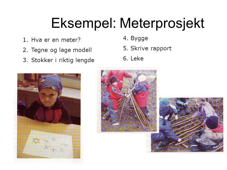 Eksempel: Meterprosjekt 1.Hva er en meter? 2.Tegne og lage modell 3.Stokker i riktig lengde 4. Bygge 5. Skrive rapport 6. Leke