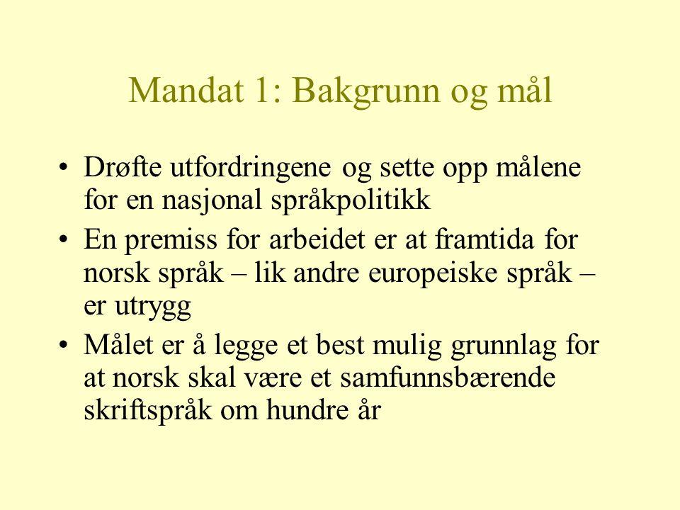 Mandat 1: Bakgrunn og mål Drøfte utfordringene og sette opp målene for en nasjonal språkpolitikk En premiss for arbeidet er at framtida for norsk språ