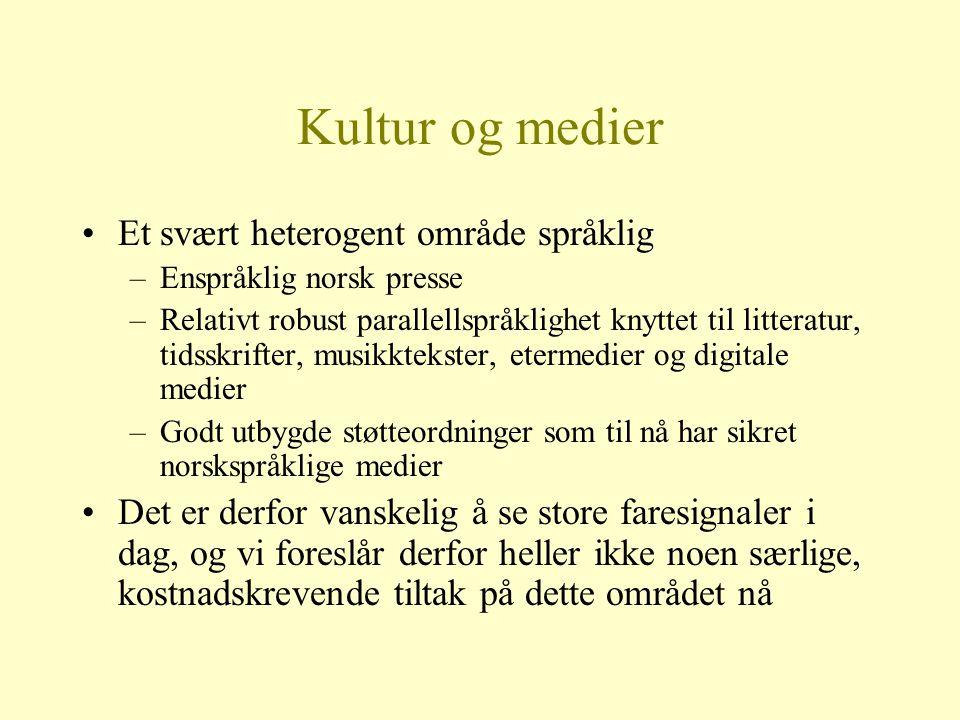 Kultur og medier Et svært heterogent område språklig –Enspråklig norsk presse –Relativt robust parallellspråklighet knyttet til litteratur, tidsskrift