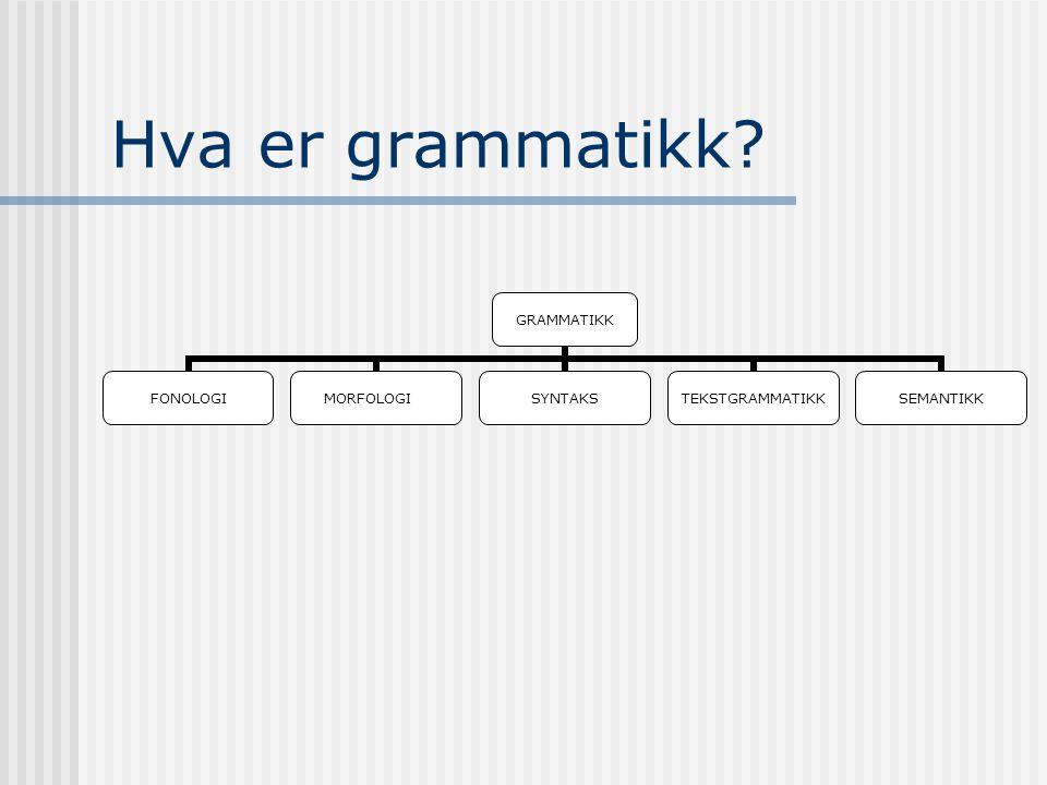 Hva er grammatikk? GRAMMATIKK FONOLOGIMORFOLOGISYNTAKSTEKSTGRAMMATIKKSEMANTIKK