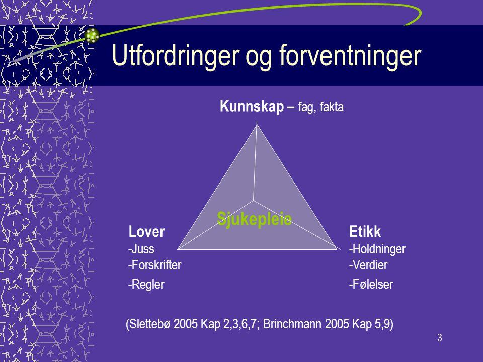 3 Utfordringer og forventninger Sjukepleie Etikk -Holdninger -Verdier -Følelser Kunnskap – fag, fakta Lover -Juss -Forskrifter -Regler (Slettebø 2005