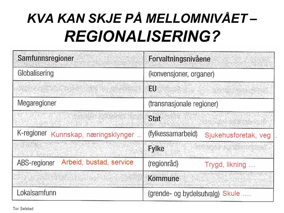 KVA KAN SKJE PÅ MELLOMNIVÅET – REGIONALISERING. Sjukehusforetak, veg..