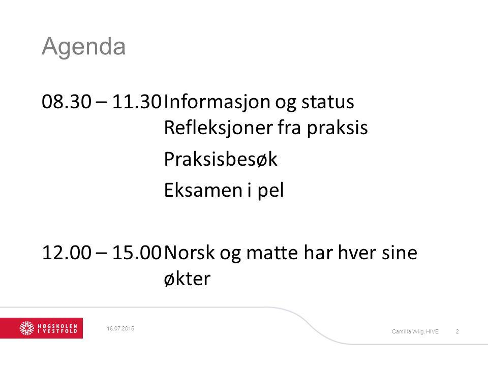 Agenda 08.30 – 11.30Informasjon og status Refleksjoner fra praksis Praksisbesøk Eksamen i pel 12.00 – 15.00Norsk og matte har hver sine økter Camilla Wiig, HIVE2 16.07.2015