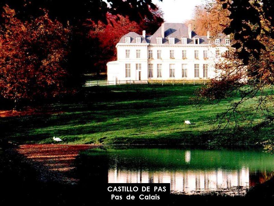 CASTILLO DE OLHAIN Pas de Calais