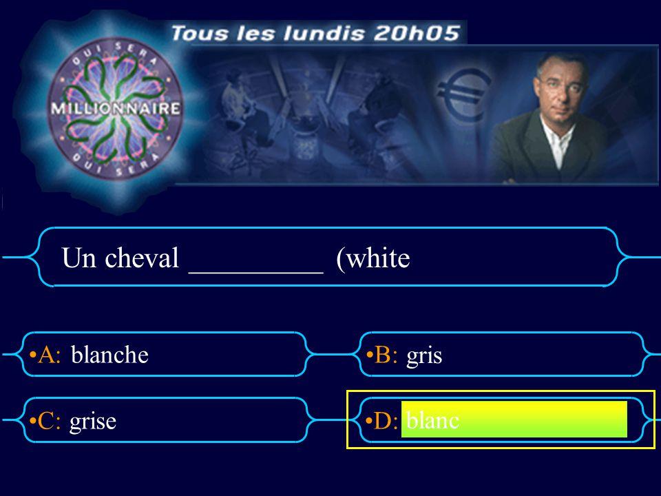A:B: D:C: Une tortue ________ (a green tortoise) bleu vert bleue verte