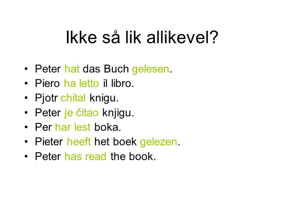 Ikke så lik allikevel? Peter hat das Buch gelesen. Piero ha letto il libro. Pjotr chital knigu. Peter je čitao knjigu. Per har lest boka. Pieter heeft